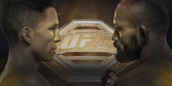 توقعات مباراة الـ يو أف سي (UFC) بين فيغوريدو (Figueiredo) وبينافيديز (Benavidez))