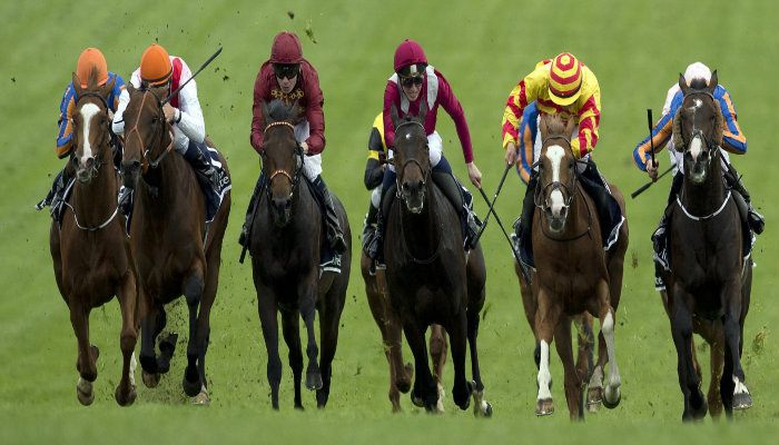 2017 Epsom Derby Betting tips