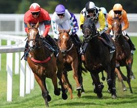 المراهنة على سباقات الخيول