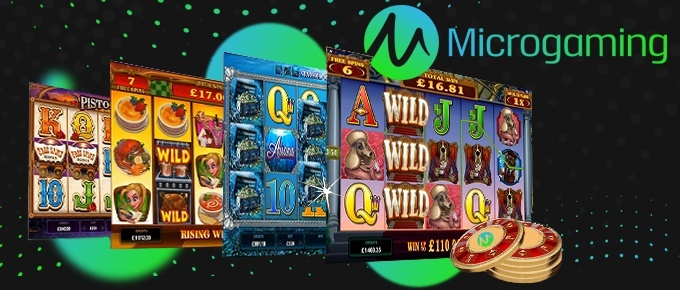 microgaming undefeated casino developer
